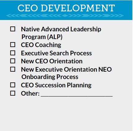 CEO Development